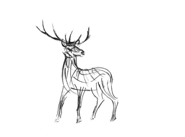 The Creative Process – Wildlife Sculpture Sketch of a majestic Stag by Andrew Kay