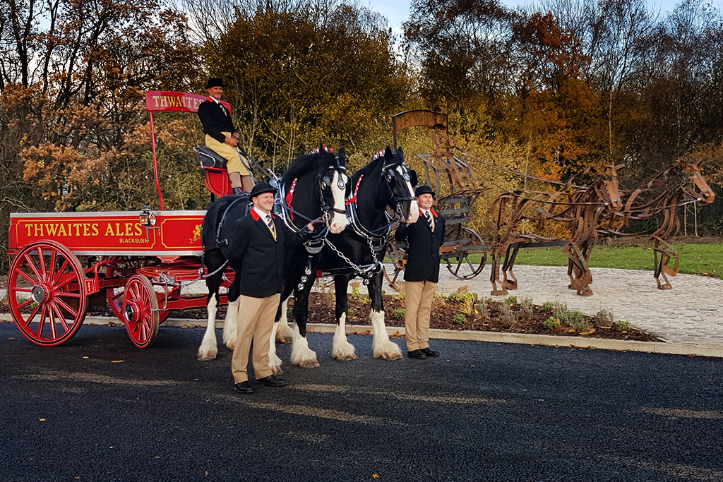 Shire Horse and dray at Daniel Thwaites