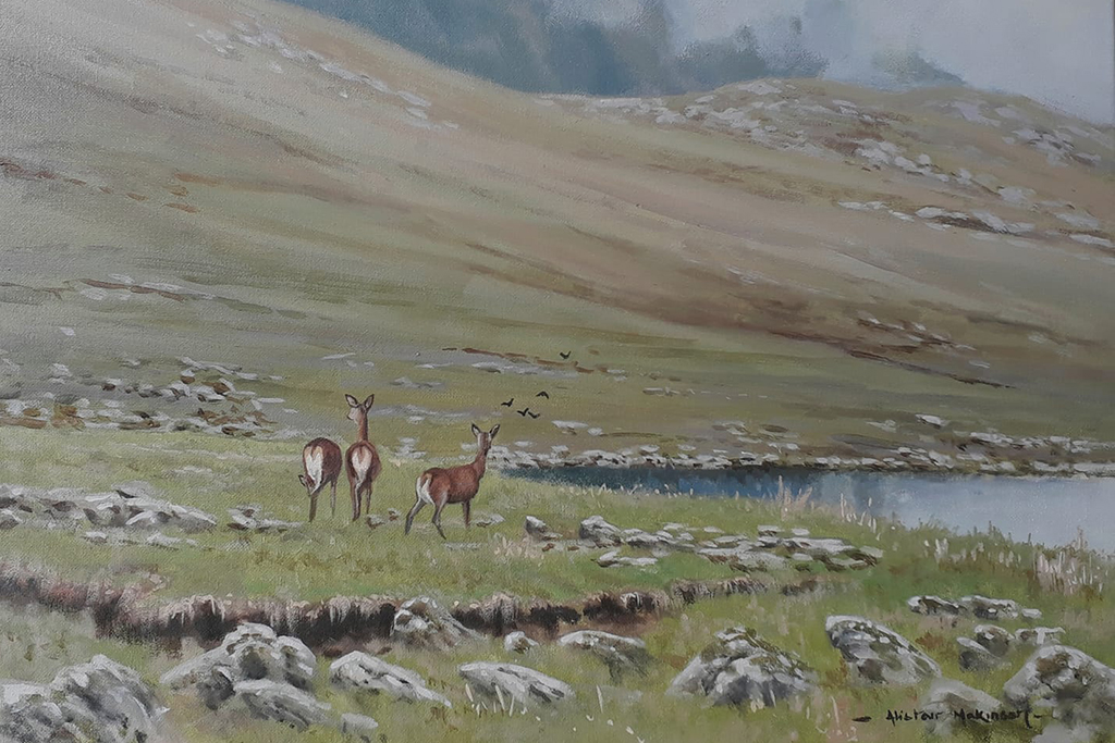 Alister Makinson painting of wary hinds