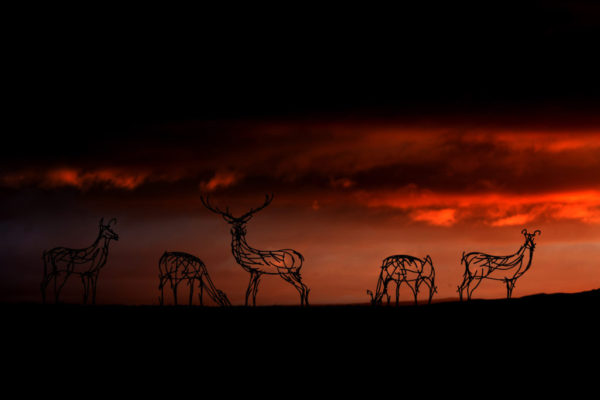 Metal Wildlife Sculptures, Red Deer large herd, against a deep red sunset