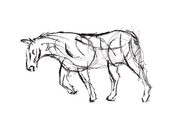 The Creative Process – Wildlife Sculpture Sketch of a Shire Horse pulling a wagon by Andrew Kay