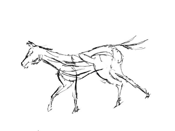 The Creative Process – Wildlife Sculpture Sketch by Andrew Kay of a running Stallion by Andrew Kay
