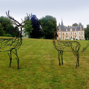 A Watchful Stag and an Alert Hind in the grounds of Belmncil Chateau