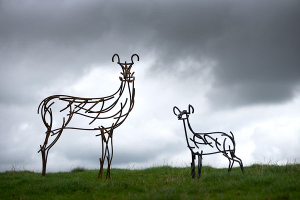Hind and Fawn Wildlife Sculptures standing on top of the Yorkshire Moors