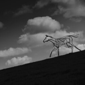 Stallion Wildlife Sculpture running down the hills in the twilight