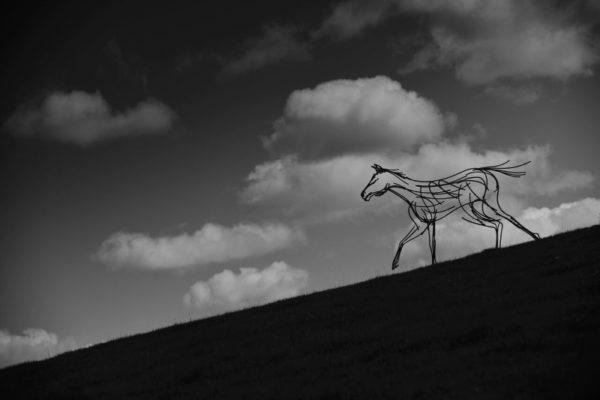 Stallion Wildlife Sculpture running down the hills in the twilight