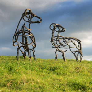 Two Swaldale Sheep standing in the field in the summer sun. Metal Wildlife Sculpture by Andrew Kay Sculpture