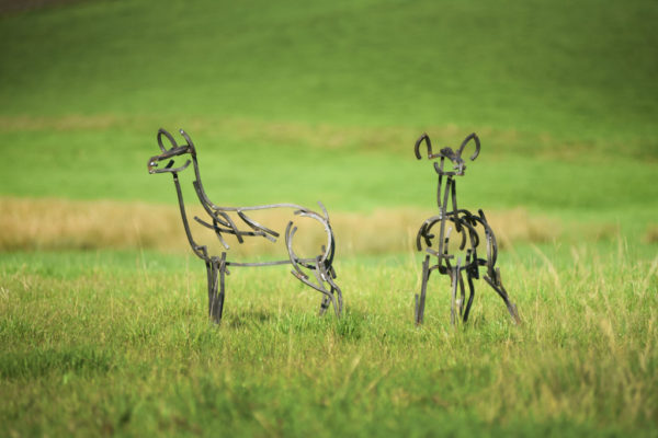 A pair of red calves sculpture standing alert in the fields