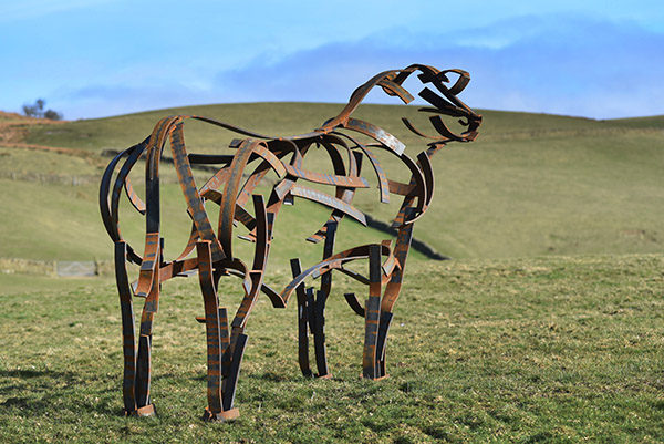 Angus Bull Wildlife Sculpture standing in the field by Andrew Kay