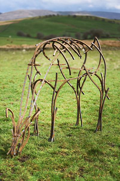 Doe grazing in the field