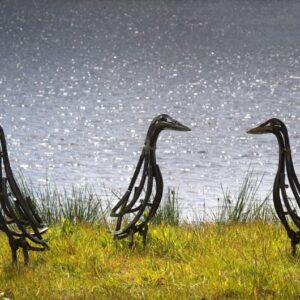 Indian Runner Ducks Wildlife Sculpture standing by lake