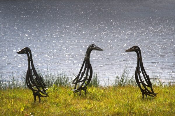 Indian Runner Ducks Wildlife Sculpture standing by lake
