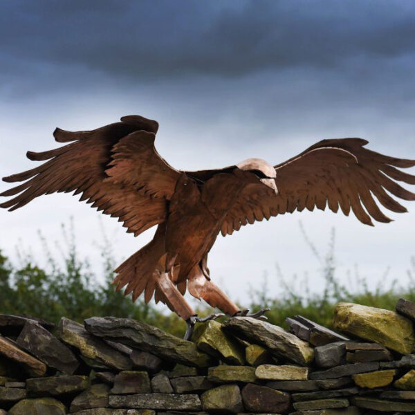 Golden Eagle swooping dow on its prey. Life Size Bronze Metal Wildlife Sculpture by Andrew Kay Sculpture